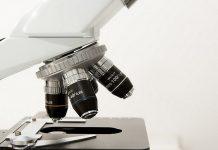 infezione contratta dopo una biopsia