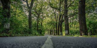 rigonfiamenti asfalto