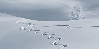 infortuni sulla neve