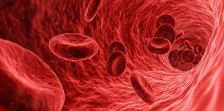 rifiuto emotrasfusioni