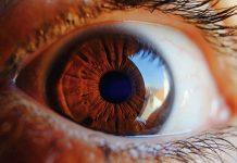 retina artificiale liquida