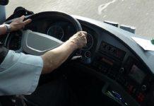 autista di autobus